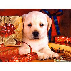 Christmas Cutie Jigsaw Design,Chrissy Pup
