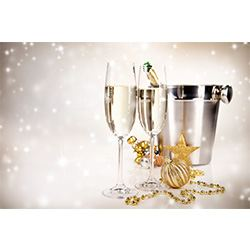 Jewels Champagne Glasses Ice Bucket,
