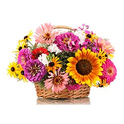 Basket of Flowers,
